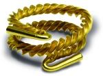 Yeovil gold torc